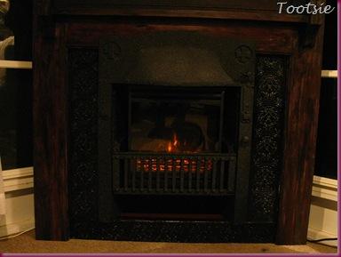 Fireplace Plug In